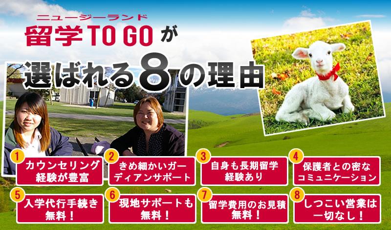 ニュージーランド留学TOGOが選ばれる8つの理由